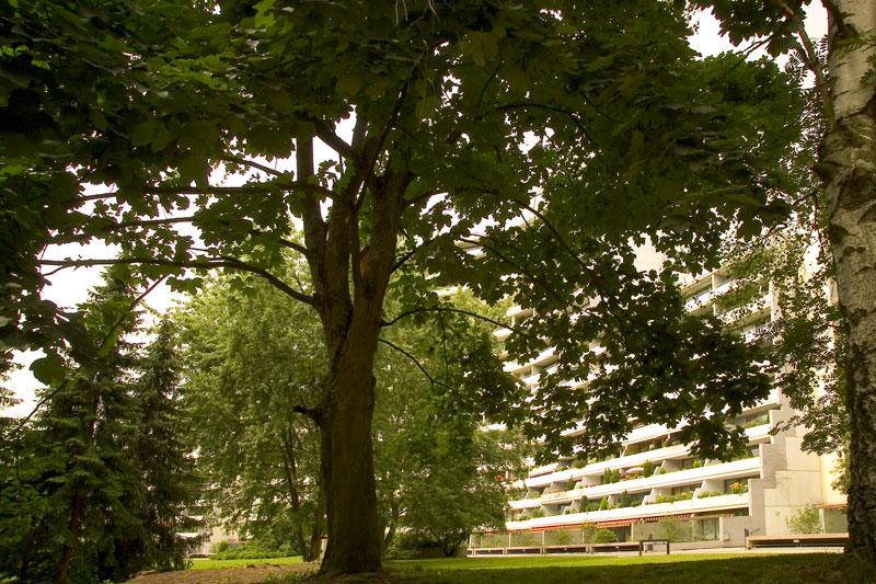 Referenz_Ypsilon-Haus Bild 1
